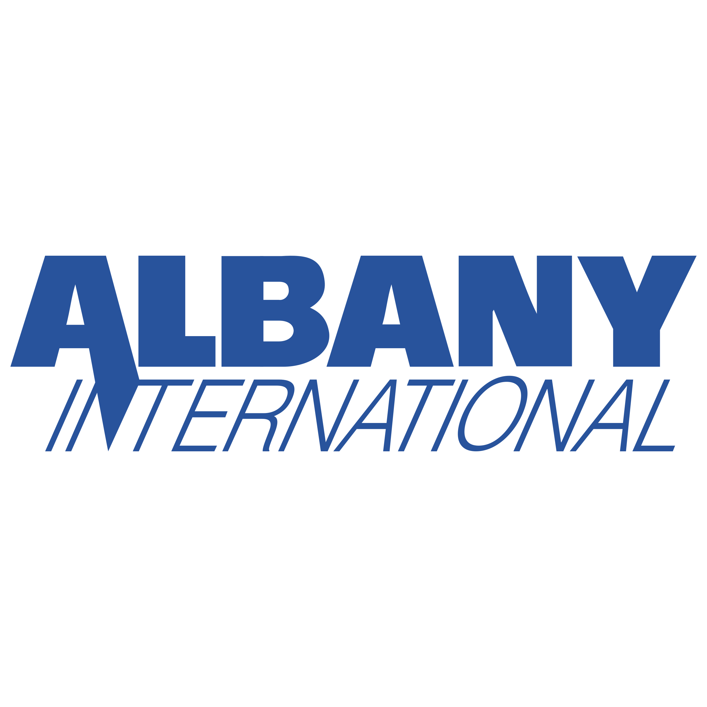 albany-international-logo-png-transparent